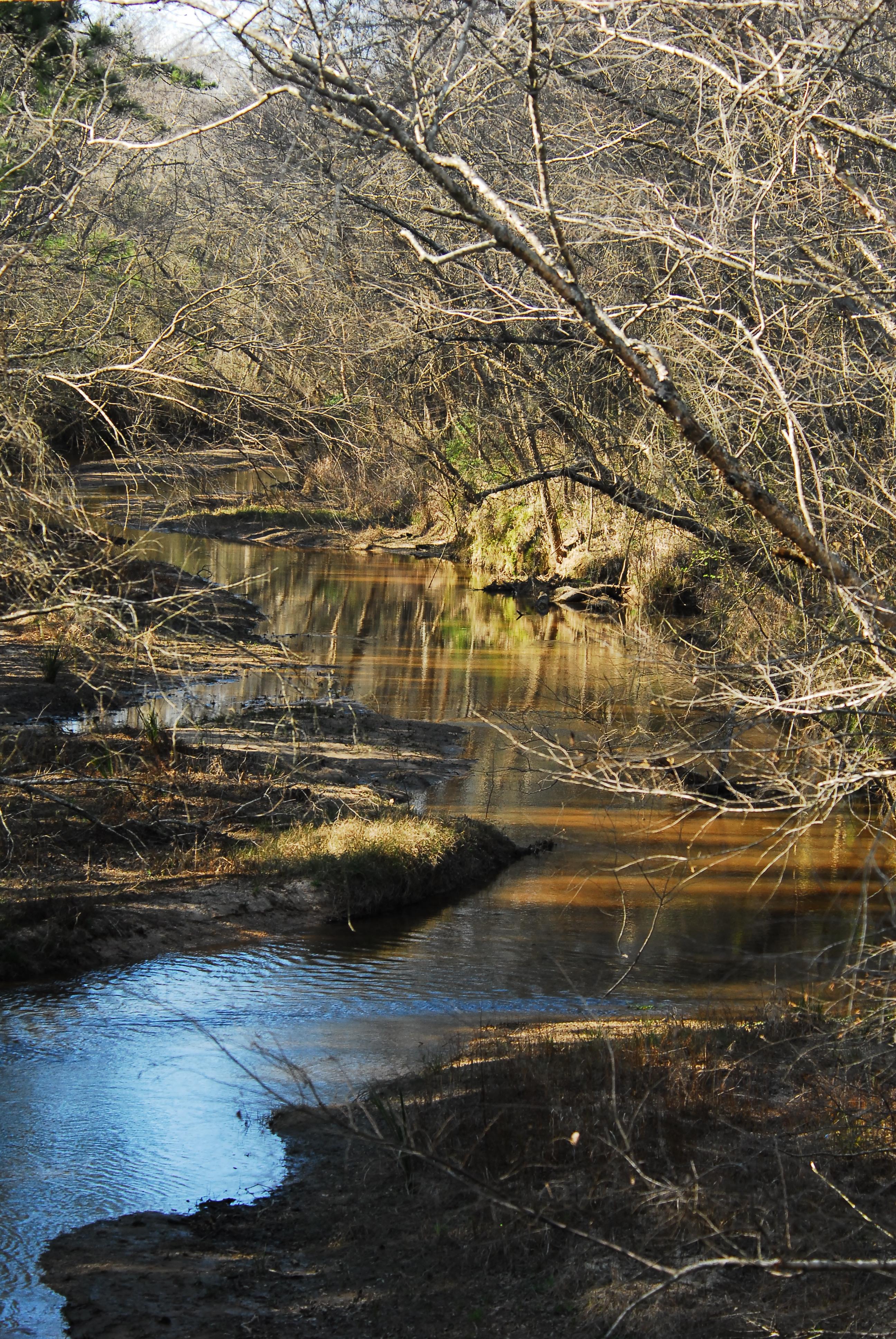 A view along Peach Creek