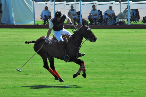 Prince William galloping across the verdant grass on his way to scoring a goal in the 2011 match in Santa Barbara.
