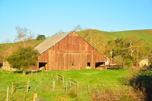 A rustic barn along the Highway.