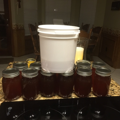12  pint jars - 18 pounds of honey and a little over 3 pounds in the white bucket. So danged good.